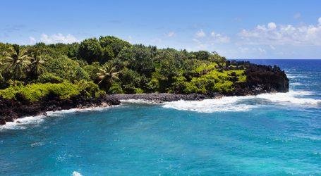 "Talk Fusion Celebrates ""Decade of Dreams in Maui, Hawaii"