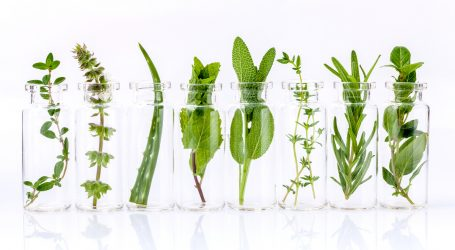 doTERRA Research Shows Potency and Efficacy of Essential Oils